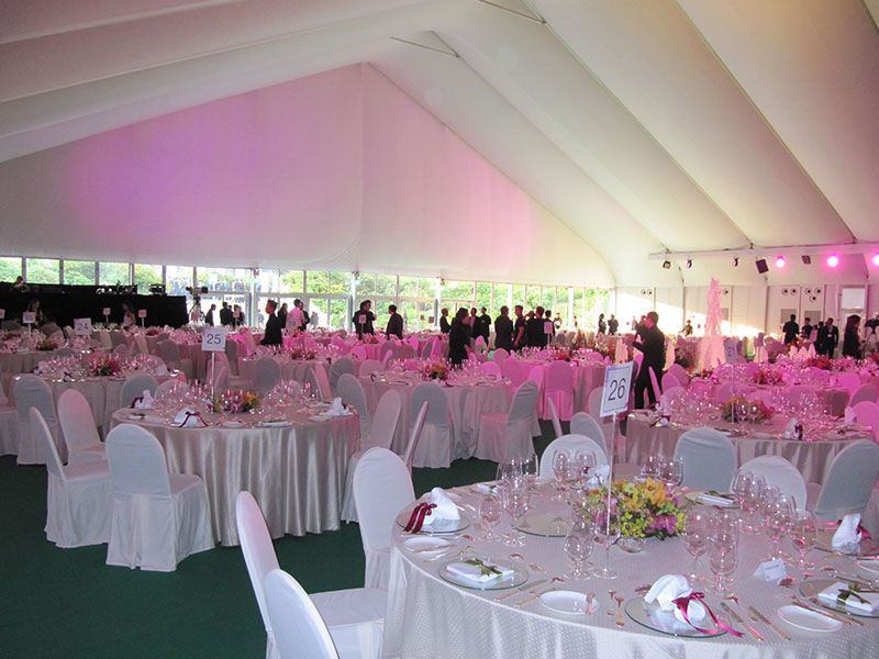 20X30 Party Tent