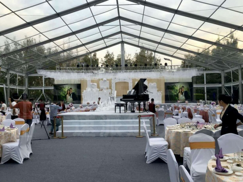 10X30 Clear Wedding Tent With Lighting