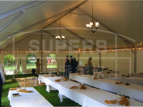 Buy Large 20 x 20 Party Tent